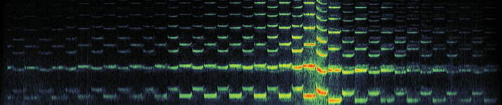 a spectrogram of an audio clip